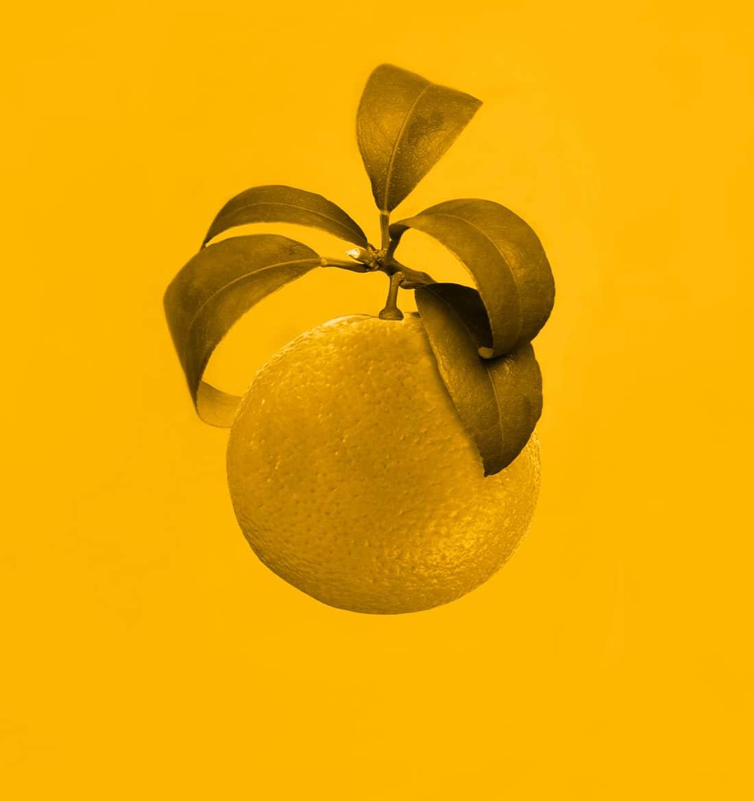 clementine-7-2